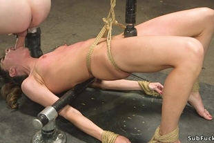Babe rough flogged and anal fucked