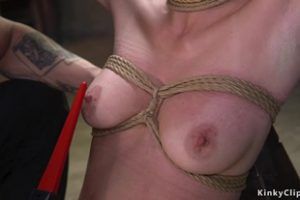 1037810 Brunette Gets Anal Fucked In Doggy Bdsm