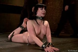 1185683 Immobilized In Vampire Trap Sub Whipped