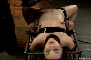 1235144 Strapped On Cage Slave Gets Shocked
