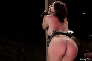 Hot ass bound Latina gets whipped