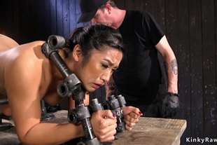 Hot ass Asian in doggy device gets bastinado
